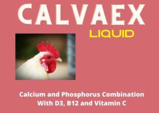 Cevaex Liquid