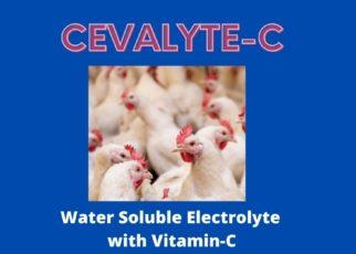 Cevalyte -C