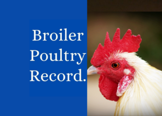Poultry Record