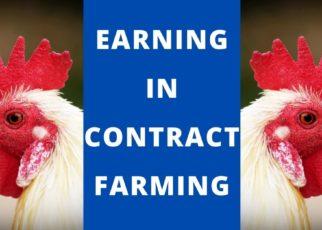 Contract farming.